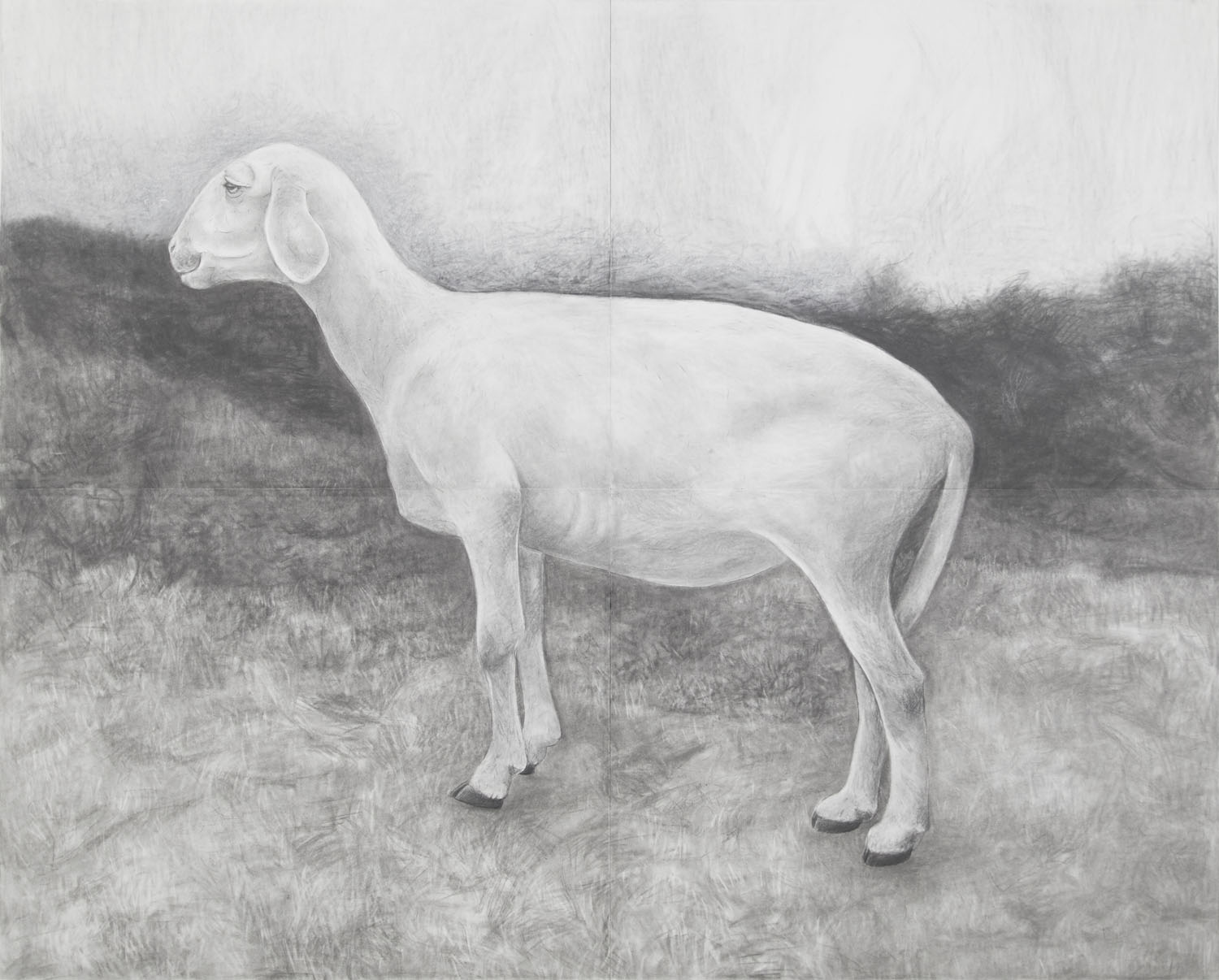 White Goat Grandmother in Landscape