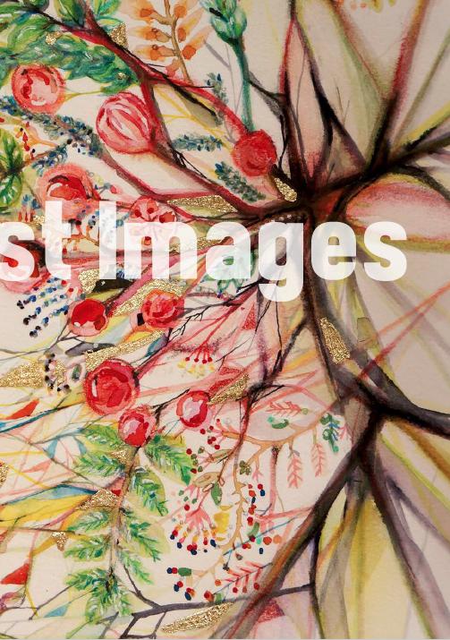 Essentialist Images