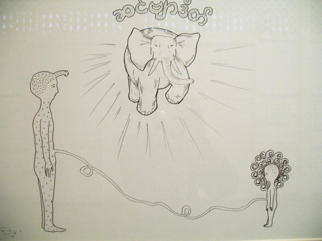 Elephant Revelation