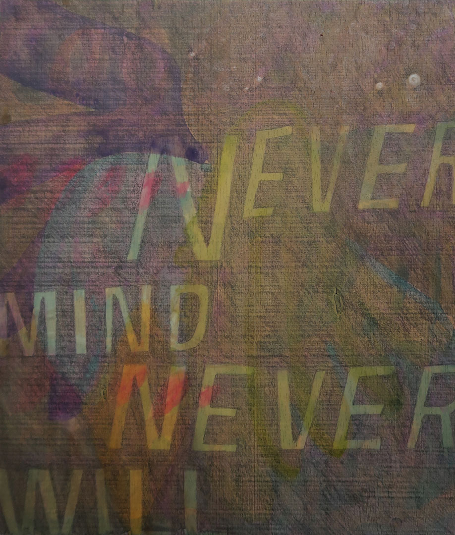 Never Mind Never Will